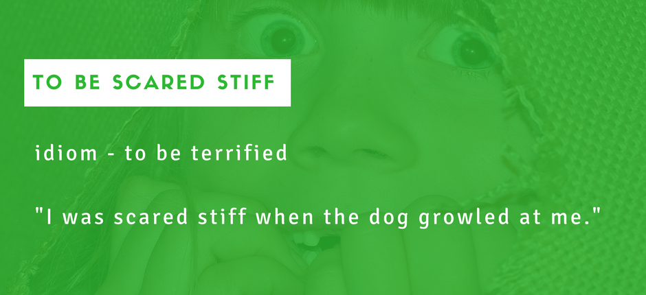 to be scared stiff - Idioms - Useful expressions
