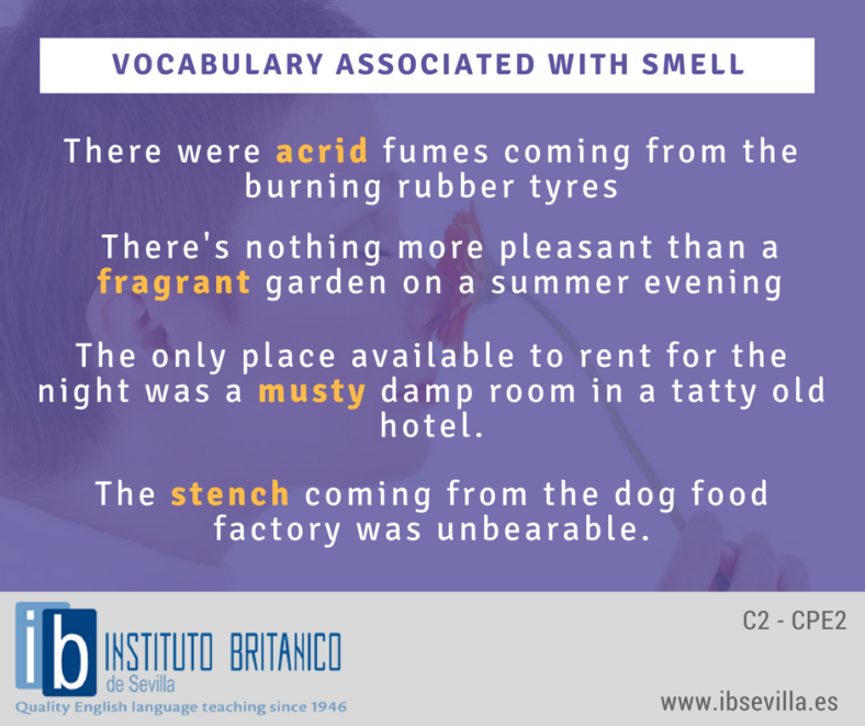 Vocabulary associated with smell